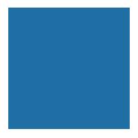 google icon blue