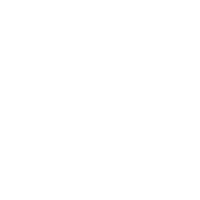 google icon white